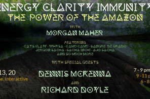 Energy Clarity Immunity: The Power of the Amazon
